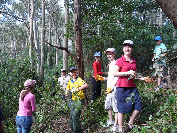 A Scout group came from Erina to help at War on Weeds