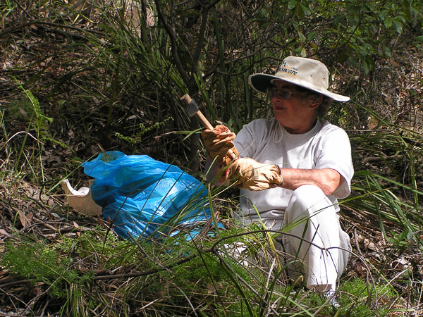 'Watch out weeds!' WTKCA member, Robyn Warburton