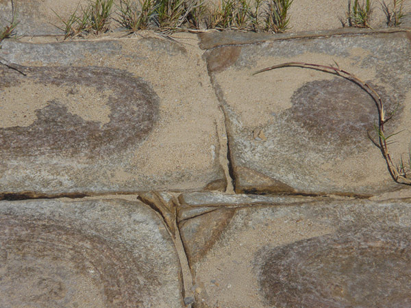 Sandstone Blocks in the Bouddi Peninsula