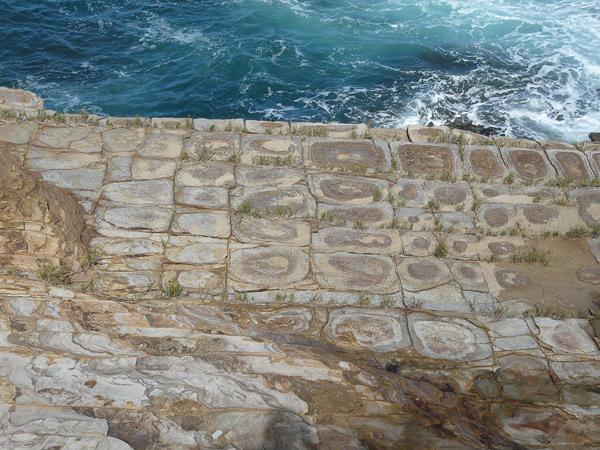Sandstone Patterns in the Bouddi Peninsula